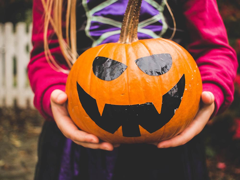 Pumpkin - Trick or Treat